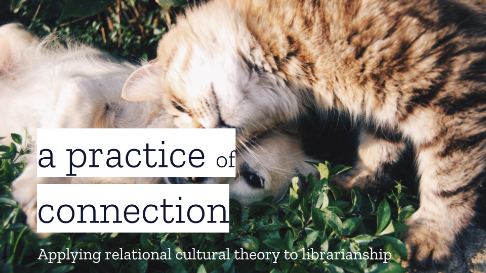 "title slide from the presentation ""a practice of connection"" [image of a cat and dog cuddling]"